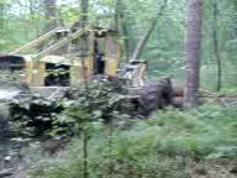 Zrywka drewna tree farmer