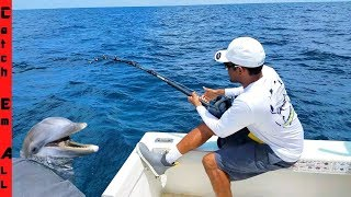 DOLPHIN Caught on FISHING LINE! Safe Release