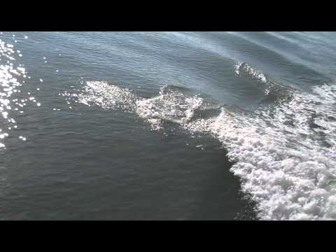 pine island sound jan2011.mp4