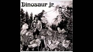 Watch Dinosaur Jr Bulbs Of Passion video