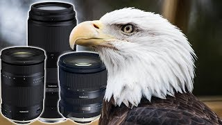 3 NEW TAMRON LENSES At The ZOO, How'd They Do? (18-400, 100-400, 24-70 G2)