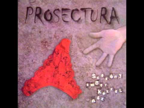 Prosectura - Zsiráf