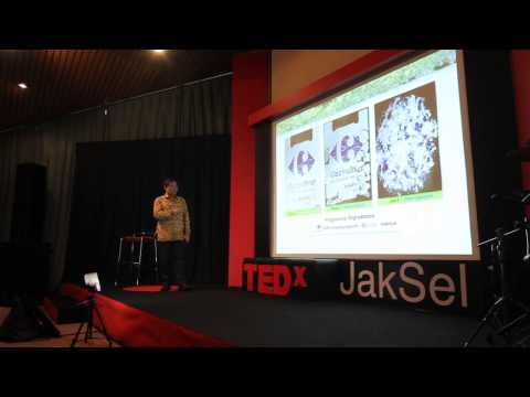 Cassava  An Indonesian Solution To The Global Waste Problem  Sugianto Tandio At Tedxjaksel