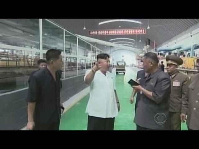 North Korea Internet hit again