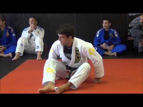 Robson Moura Shows Butterfly Guard Basics