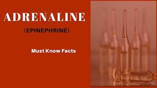 Adrenaline/Epinephrine: Uses, Dosage, Side effects, Precautions, Interactions