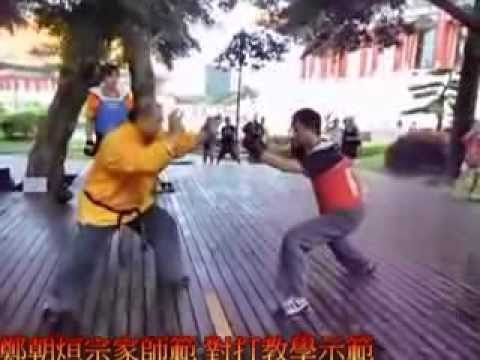 Baji Zhang/Quan Sparring/Technique Instruction China 格鬥八極拳    對打教學示範 Image 1