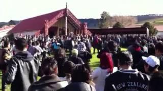 Our lil cuzn Tangi in Kahuranaki Marae, Hastings New Zealand