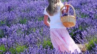 Brian Crain Lavender Hills