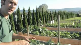Huertas a la carta//Diseño de jardines comestibles//LlevamealhuertoTv