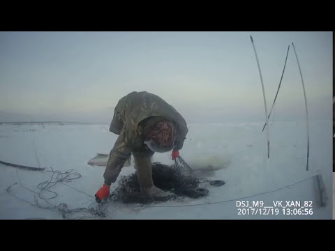 Проверка перемета и проверка чужой сетки! Якутия Yakutia