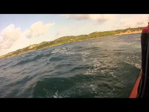 Underwater Africa Marine Megafauna Experience