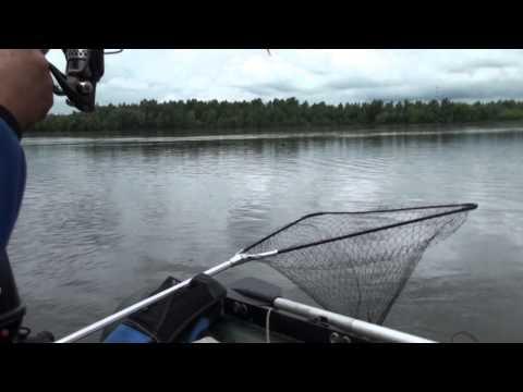 как рыбачить без удочки ютубе