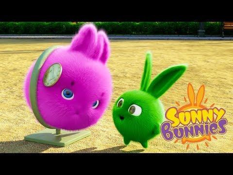 Cartoons for Children | SUNNY BUNNIES - AMUSEMENT PARK | Funny Cartoons For Children