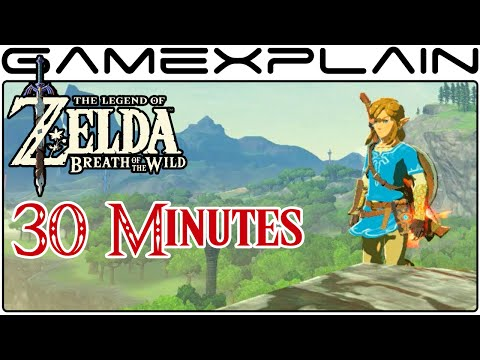 30 Minutes of Zelda: Breath of the Wild (DIRECT FEED E3 Gameplay)