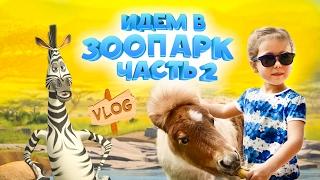 VLOG: Идём в зоопарк. Популярное видео для детей. Часть 2