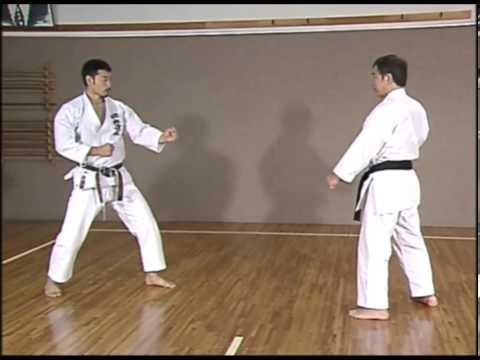 Kanazawa Hirokazu S K I F  Complete Guide Vol 2