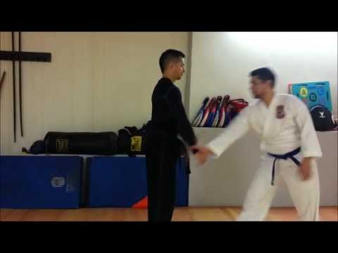 Tuite (Chin Na/Qin Na) self defense techniques demo Image 1