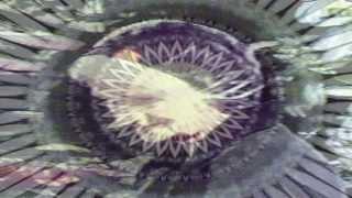 Watch Jack Frost Geneva 4 Am video