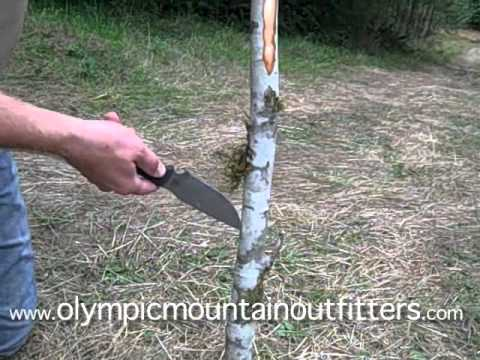 Survival Bow, How to build a long bow, DIY bow - YouTube