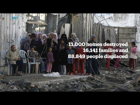 Desperation in Gaza Strip