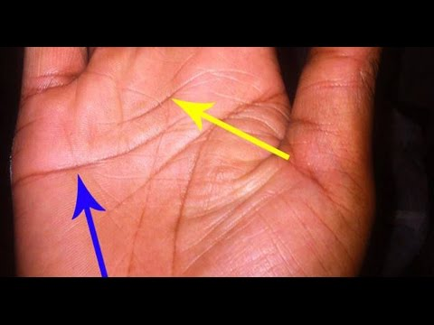 WEALTH LINES EXPLAINED #30 PALMISTRY