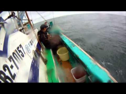 千葉 大原 一つテンヤ真鯛&ヒラメ釣り