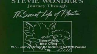 Watch Stevie Wonder Black Orchid video
