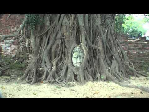 Wat Mahathat – Ayutthaya – Thailand