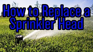 DIY How-To: Sprinkler Head Replacement