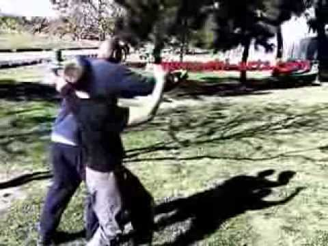 real ba gua fight training training Image 1