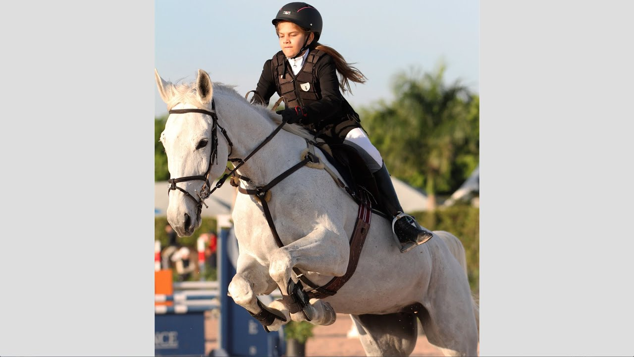 The Winter equestrian festival photos