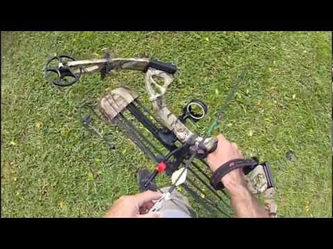 ~PSE~Stinger compound bow ~30 yard tree stand shots~