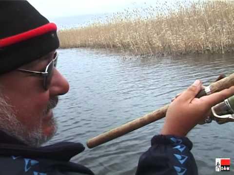 рыбалка с с.боровиковым
