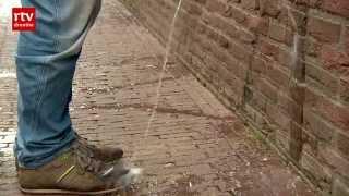 Download lagu Terugplasmuur tegen wildplassers in Meppel   RTV Drenthe
