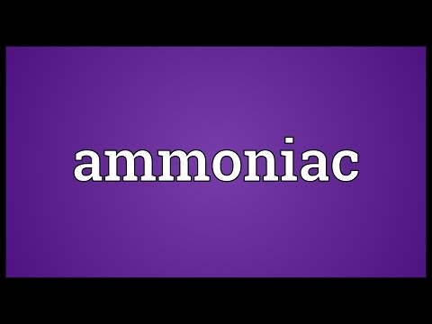 Header of ammoniac