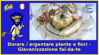 Come dorare / argentare plante e fiori - Galvanizzazione fai-da-te