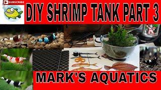 HOW TO SETUP A SHRIMP TANK PART 3