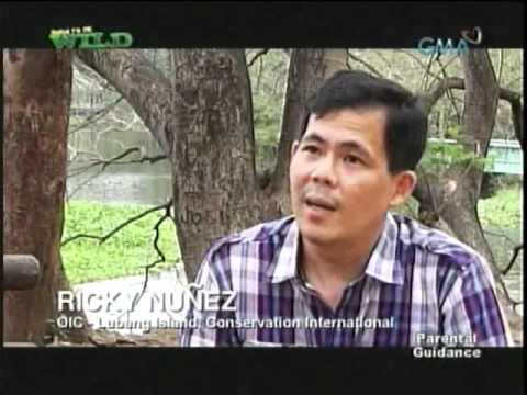 Born To Be Wild -  Lubang's Marine Protected  Areas (March 3, 2011)