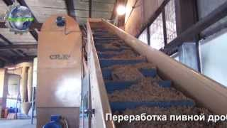 Переработка пивной дробины. The milling-drying.