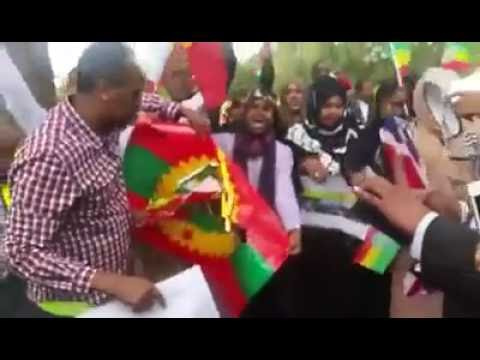 Somalis In Minesota Burning Ethiopian And OLF Flag