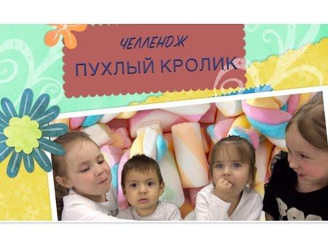 CHUBBY BUNNY CHALLENGE! | ВЫЗОВ ПУХЛЫЙ КРОЛИК!