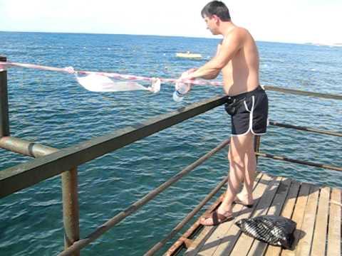 ловим рыбу в турции