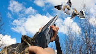 Dove Hunting Best Shots,Chasse De Palombe En Ralentie - Saison 2017
