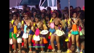 Reed Dance Ceremony  (Umhlanga)  _# 8-13