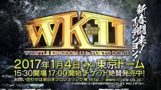 WRESTLE KINGDOM 11 in TOKYO DOME TV-CM