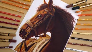 Drawing Realistic Horse