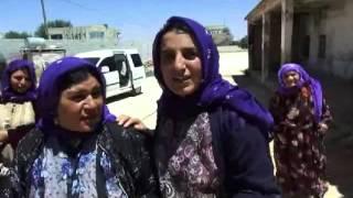 Şanlıurfa'da öldürüldüğü iddia edilen kadın