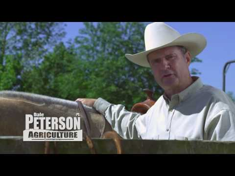 http://www.dalepeterson2010.com/donatehere.html Dale Peterson, Alabama Agriculture Commission, Grassroot Caucus endorsed candidate fighting the fight to save...