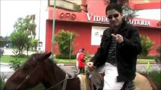 Thumb Freddie habla sobre páginas web hechas en Flash mientras monta un Pony